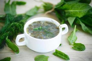 sorrel soup photo
