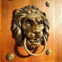 tirador de puerta de león dorado - lateral