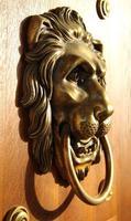 tirador de puerta de león dorado - vista lateral foto