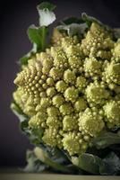 Romanesco Cauliflower photo