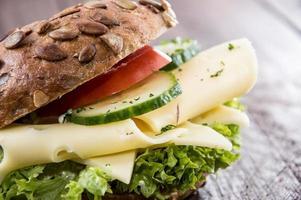 Cheese Sandwich photo