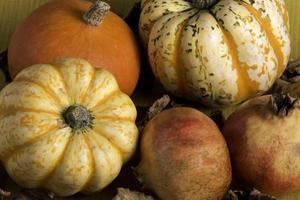 calabazas de otoño y granada