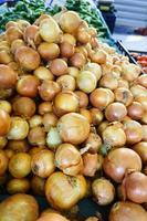 Fresh onion.  onions background photo