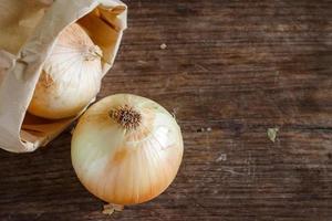 Onion photo