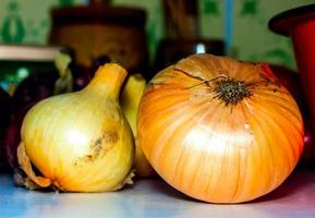 Onions background. photo
