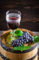 Tasty wine in glass with grapes