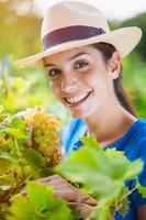 mujer recogiendo uvas en el jardín foto