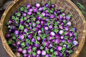 berenjenas violetas