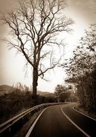 Road landscape, vintage road photo