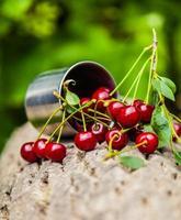 manojo de cerezas maduras derramadas de foto