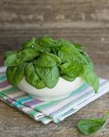 baby spinach in a white plate photo