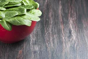 Fresh spinach in a bowl on wooden background photo