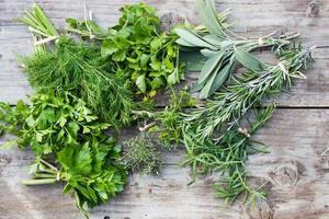 Fresh green herbs photo