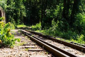 vías de tren foto