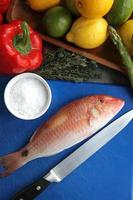 Fresh red snapper photo