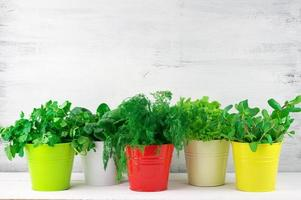 Flavoring greens in buckets photo
