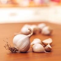 Garlic photo