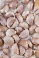 Fresh garlic.. photo