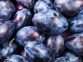 healthy plums photo