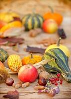Organic autumn fruits and vegetables photo