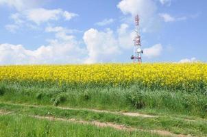 Telecommunication tower on the field photo