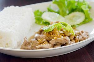 Pork with Garlic Rice