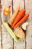 aipo, cenoura, raiz de salsa, alho, cebola, alho-poró.