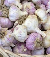 Farm fresh organic garlic cloves