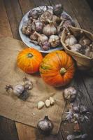 Pumpkins and garlic photo