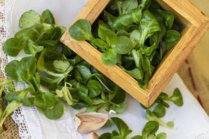 Lamb's lettuce in wooden box photo