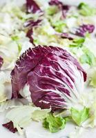 Radicchio with iceberg, romaine lettuce leaves photo