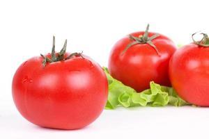 Tomatoes and green salad leaf photo