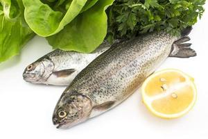 Two rainbow trout with lemon, parsley and lettuce