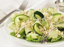 Cucumber salad photo