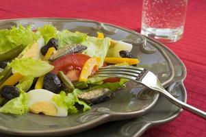 ensalada de verduras con anchoas foto