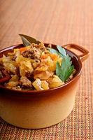 Cabbage stewed with meat