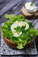 Green vegetarian salad with egg