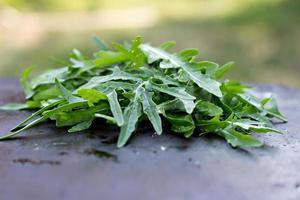 Fresh arugula leaves. photo