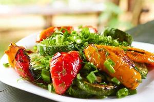 dish with grilled sweet peppers, zucchini, green onions and herb