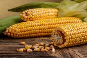 Fresh corn vegetable