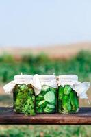 Pickled cucumbers made with home garden vegetables and herbs photo