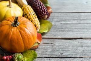Pumpkins, acorns, leaves and berries