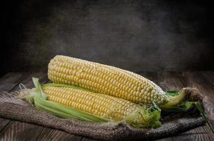 maíz foto