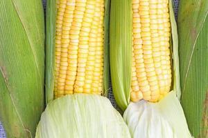 corns photo