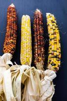 vuursteen maïs