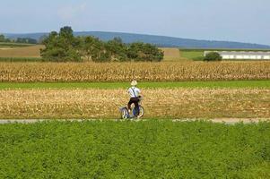 Amish Boy photo