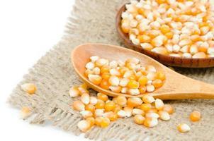 raw corn seed
