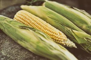 Ripe corn on a wooden table photo