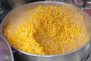 Steaming Corn seed photo