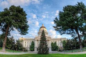 amplia vista del ángel del árbol de navidad del estado de california